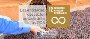 ODS 12 y sector privado.