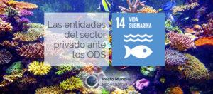ODS 14 y sector privado