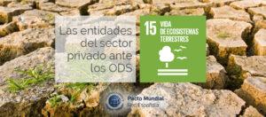 Sector Privado ante los Objetivo de Desarrollo Sostenible_15