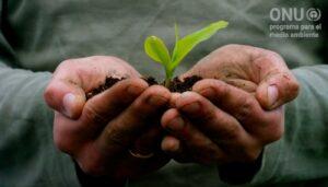Recuperación sostenible