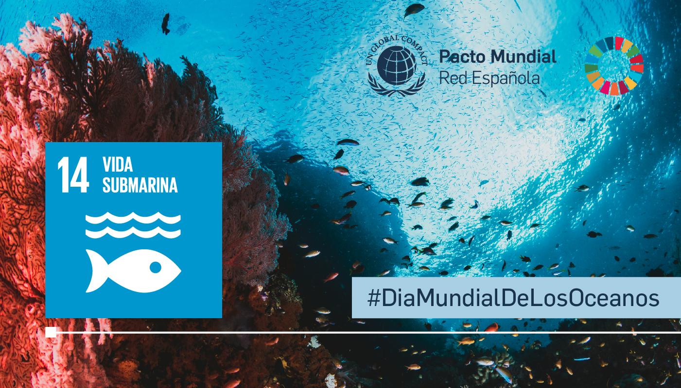 Océanos - Día Internacional de los Océanos - ODS 14: vida submarina
